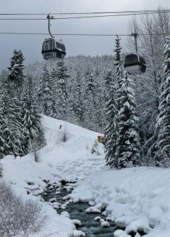 Blackcomb gondolas