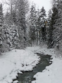 Stream flowing through Whistler Village