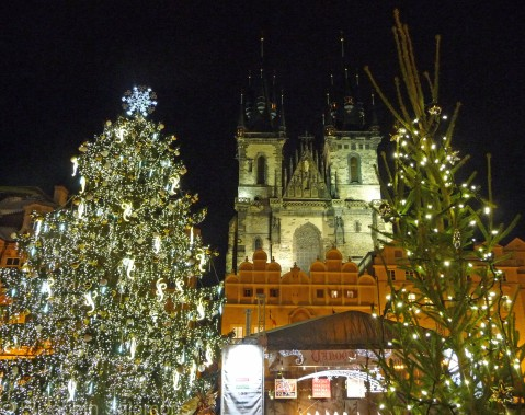 Christmas trees and Church of Our Lady before Týn, Prague