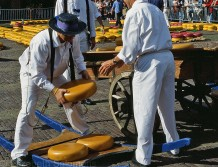 Then the cheese is loaded onto the carts and carried away to the trucks that bring it to the buyers' warehouses.