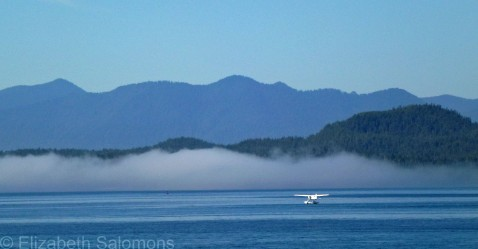 Float Plane and Fog Bank