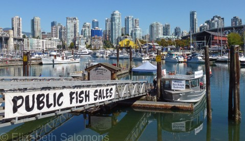 False Creek Fisherman's Wharf