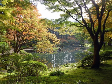 Nitobe Memorial Garden Fall