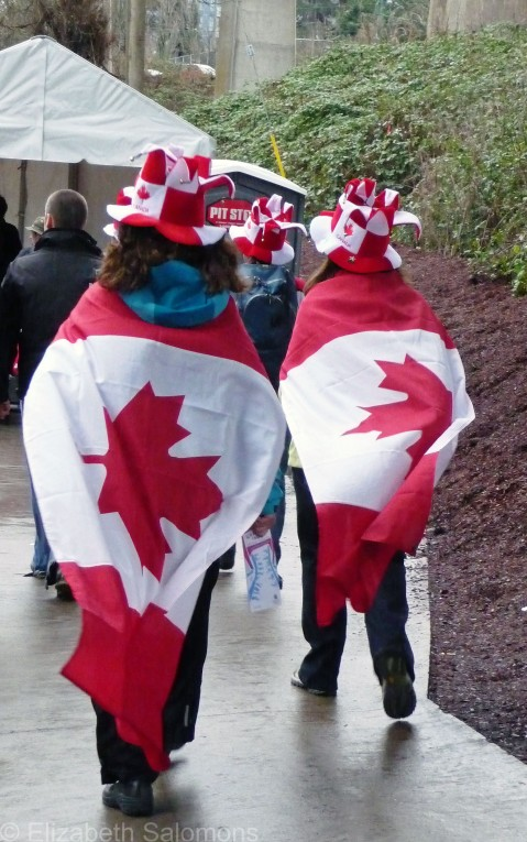 Maple Leaf Flag 3