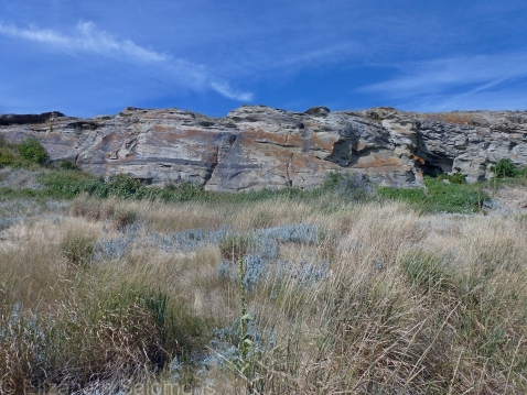 Buffalo Jump Bottom