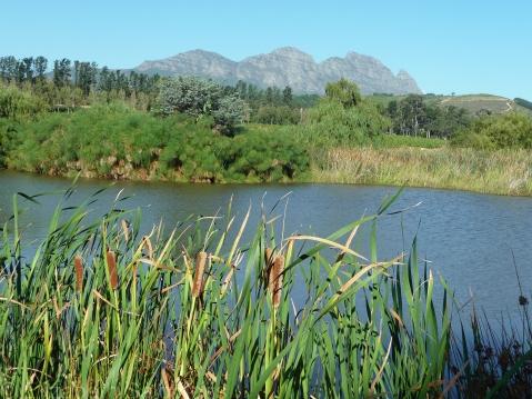 Lake at L'Avenir