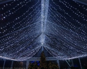 Canteen Tent Lights