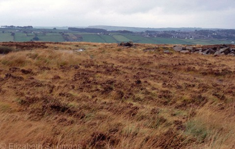 Haworth Moors and Fields