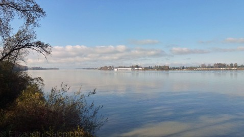 Fraser River at Deas Island Park