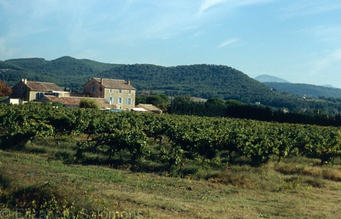 Domaine du Crestet and Vineyard