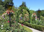 Rose Garden Arches